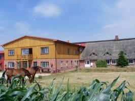 """Urlaub in der Natur und auf dem Bauernhof! / Bauernhof/Ferienhof """"Carstens"""" in Rantrum"""