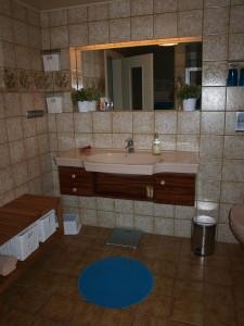 """Bad mit WC und geräumiger Dusche / Ferienhaus """"Reetdachhaus Margaux"""" in Wobbenbüll"""