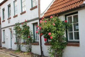 """Rosenberankte und verkehrsberuhigt heißt das Haus sie willkommen. / Ferienwohnung """"Altstadtidyll -Gartenidyll"""" in Husum / Nordsee"""