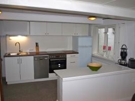 """komfortabel ausgestattete Küche mit Geschirrspüler, Ceranfeld, Backofen, Kühlschrank mit Gefrierfach / Ferienhaus """"Ferien unter Reet"""" in Ostenfeld"""