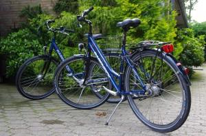 """2 neuwertige Fahrräder stehen Ihnen kostenlos zur Verfügung / Ferienwohnung """"Ferienwohnung Krön"""" in Wobbenbüll"""