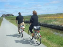 """Das Ferienhaus liegt direkt an einem Radwanderweg. Von hier aus lassen sich schöne Fahrradausflüge starten. / Ferienhaus """"Haus Wattenmeerblick"""" in Nordstrand"""