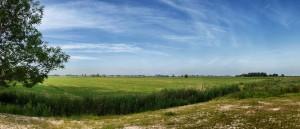 """Der Blick vom Grundstück über die Felder .... / Ferienhaus """"Kate am See"""" in Porrendeich/Uelvesbüll"""