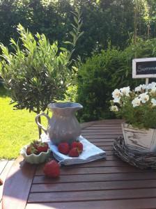 """Erdbeeren gibt es in Hattstedt ab Juni direkt vom Feld. / Ferienwohnung """"Nordstern"""" in Hattstedt"""