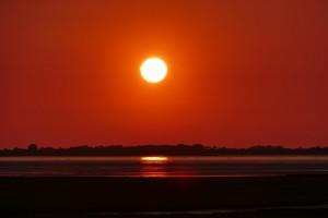 """Und abends mit einer Flasche Wein den Sonnenuntergang am der Nordsee genießen (Originalfoto vom Deich, etwa 300 Meter vom Haus entfernt) / Ferienhaus """"Peters"""" in Simonsberg"""