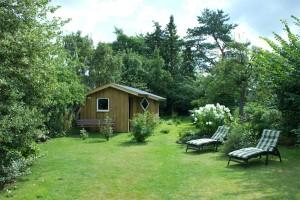 """Blick von der Terrasse in den eingewachsenen Garten mit Geräteschuppen. / Ferienhaus """"unter der Buche"""" in Husum"""