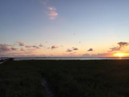 """Sonnenuntergang  über der Nordsee direkt vor der Haustür / Ferienwohnung """"Norderoog"""" in Husum-Schobüll"""