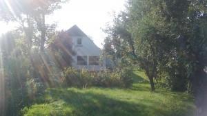 """/ Ferienwohnung """"Alpakahöfle"""" in Nordstrand"""