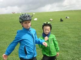 """Unsere Kinder genießen frische Brise und Auszeiten / Ferienhaus """"Muschelsucher 2"""" in Nordstrand-Norderhafen"""