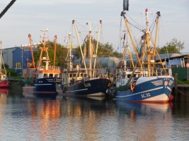 """Abendstimmung am Außenhafen mit Krabbenkutter / Ferienwohnung """"Husum-Tied"""" in Husum"""