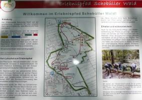 """auf dem Erlebnispfad entdeckt man lernt man so einiges hinzu. / Ferienwohnung """"Nordstrand frei ab 29.10."""" in Husum - Schobüll"""