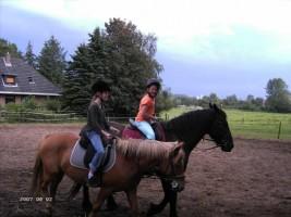 """Auch auf den Pferden können Sie den verdienten Urlaub genießen und mal ein Paar Runden auf dem Reitplatz drehen. / Ferienwohnung """"Bei Uwe und Cordula"""" in Husum"""