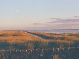 """Die Nordsee lädt Sie mit einer wunderschönen Landschaft ein die Küsten  zu erkunden. / Ferienwohnung """"Bei Uwe und Cordula"""" in Husum"""