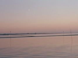 """Genießen Sie den erholsamen Urlaub an der Nordsee! / Ferienwohnung """"Bei Uwe und Cordula"""" in Husum"""